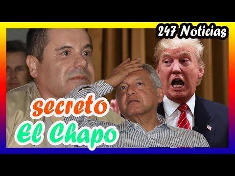 ¡ ULTIMA HORA ! Trump reveló el TERR-lBL3 secreto de El Chapo y el muro de Trump | AMLO Sh0ck
