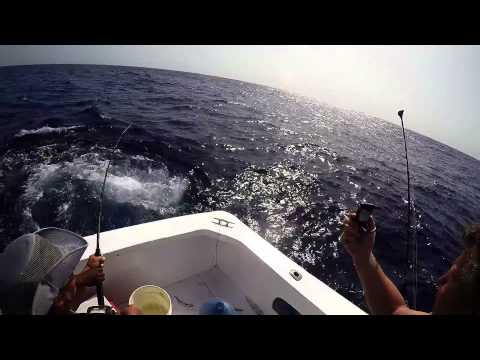 Big Game Fishing Punta Cana Gopro 4 Silver