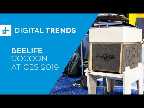 BeeLife CoCoon - Hands On at CES 2019