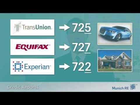 Munich Re Underwriting Training - Understanding Credit Reports