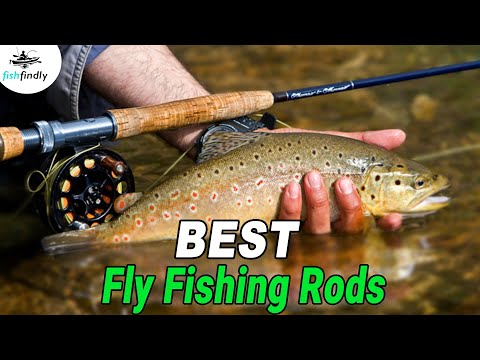 Best Fly Fishing Rods In 2020 – Find The Perfect One Here