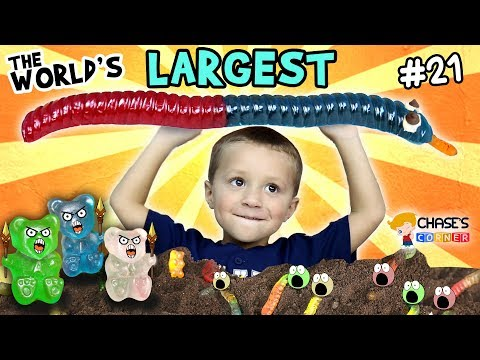 Chase's Corner: World's Largest Gummy Worm (#21) | DOH MUCH FUN