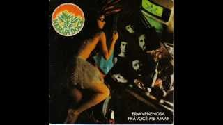 Banda Herva Doce- Erva Venenosa prá você me amar(1982)