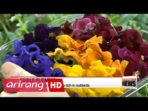 Edible flowers are organic and rich in nutrients