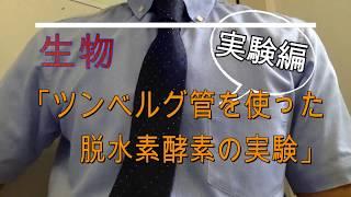高校生物(専門)「ツンベルク管を使った脱水素酵素の実験」〜実験編〜