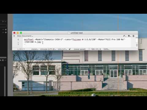 Capture One Pro - QuickTips - Exif in COP aendern (Analog I)