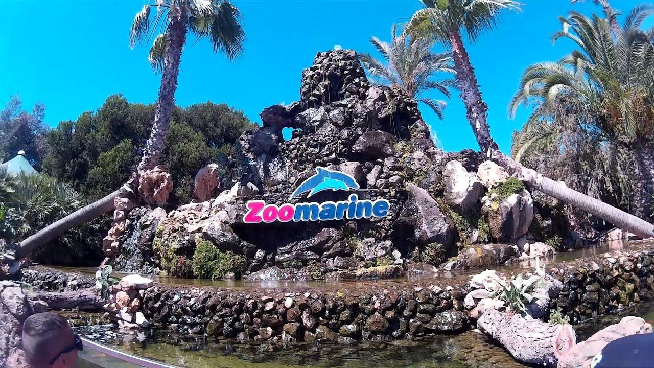 Zoomarine Algarve Experience - YouTube