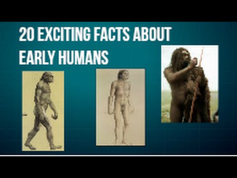 20 Exciting Facts About Early Humans