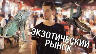 Экзотика в Таиланде. Рынок с экзотическими животными в Бангкоке