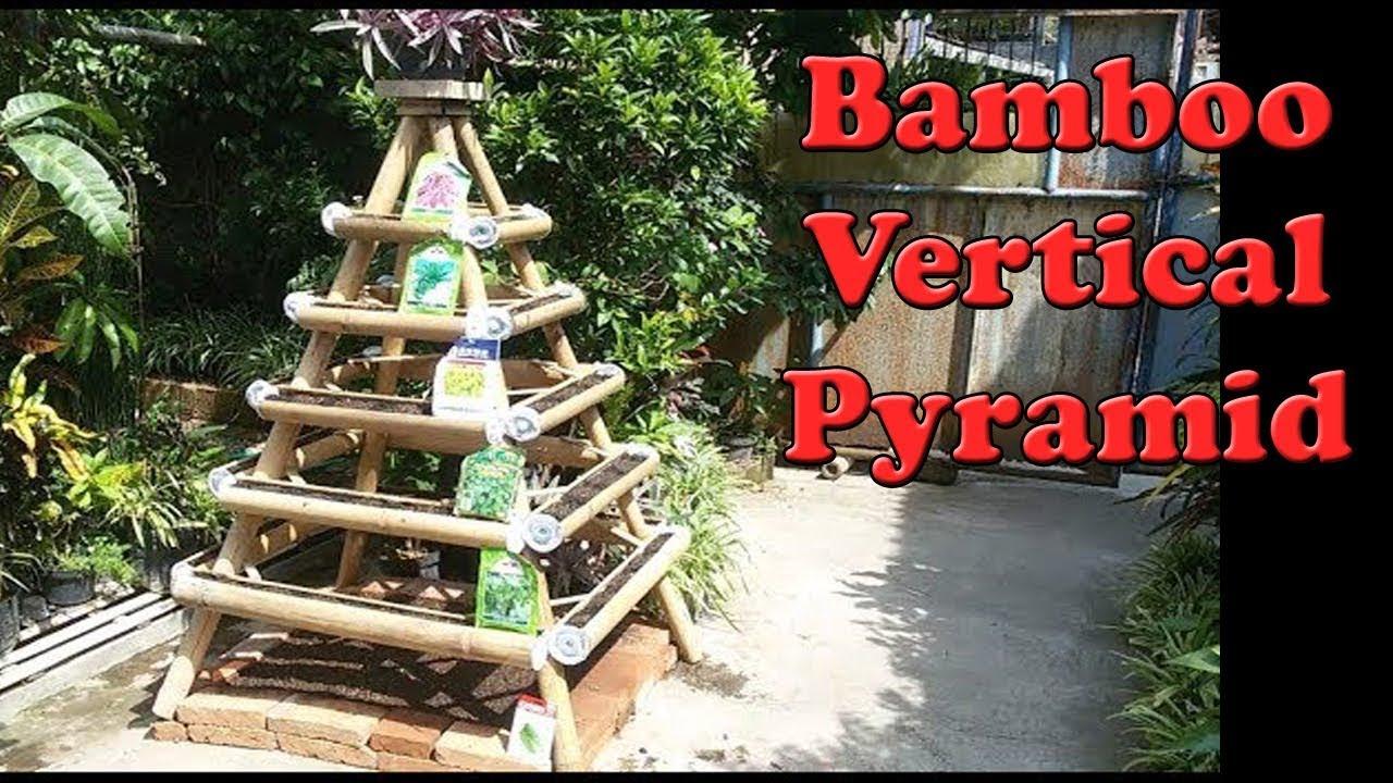 Tis Semai Sawi Vertikultur Piramida Bambu Cara Buat Tanam Sempit