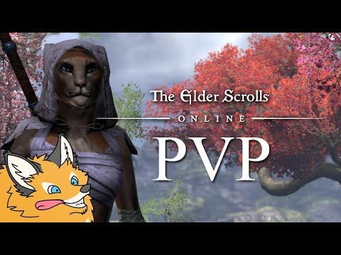 ESO PVP First Person Fun With Gimmick Sets - Elder Scrolls Online