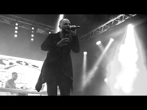 Чёрный ворон (песня) — Википедия