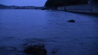 錦海湾ライズ2010-7-11