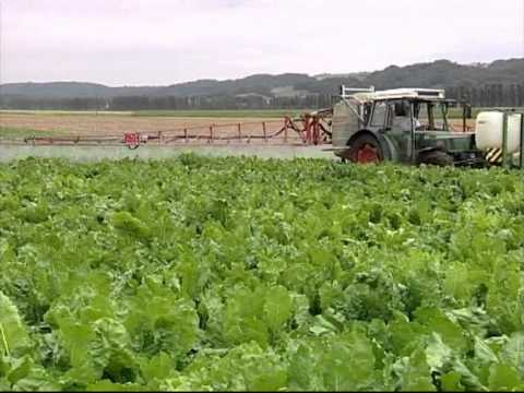 Los agricultores suizos dan vida al campo