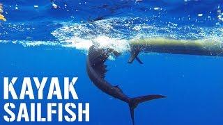 Kayak Fishing: SAILFISH DOUBLE in Florida