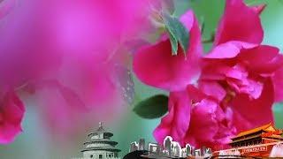 《地理中国》 20190724 神奇的馈赠| CCTV科教