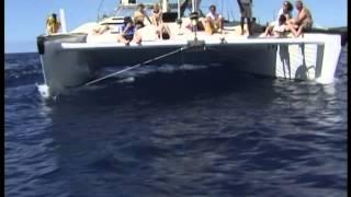 Barbados Catamaran trip