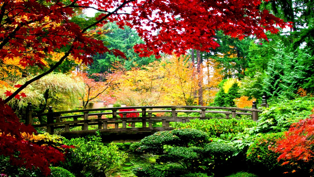 Beautiful natural gardens - Beautiful Natural Gardens 25