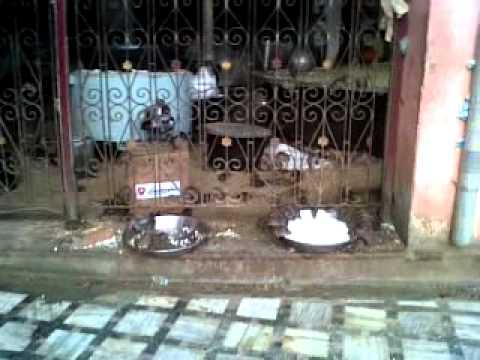 Rat Temple Bikaner Rajasthan
