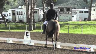 433 1 Denise Nelson Finster on Rococo Chanel 2015 First Level Test 1