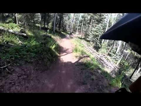 Angel Fire Bike  Park Chutes and Ladders