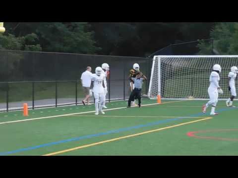 Henry TD catch St. Frances/Avalon football 08/26/16