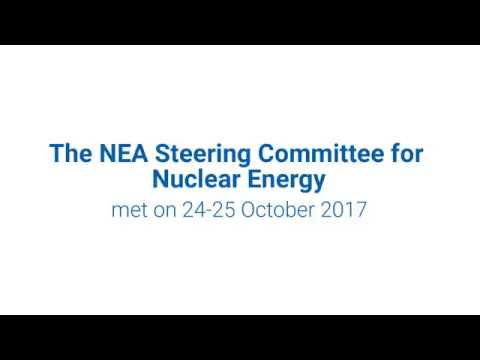 First participation of Argentina and Romania in the Steering Committee for Nuclear Energy