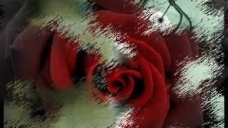 Galina Savova - Liebestod (Love Death)