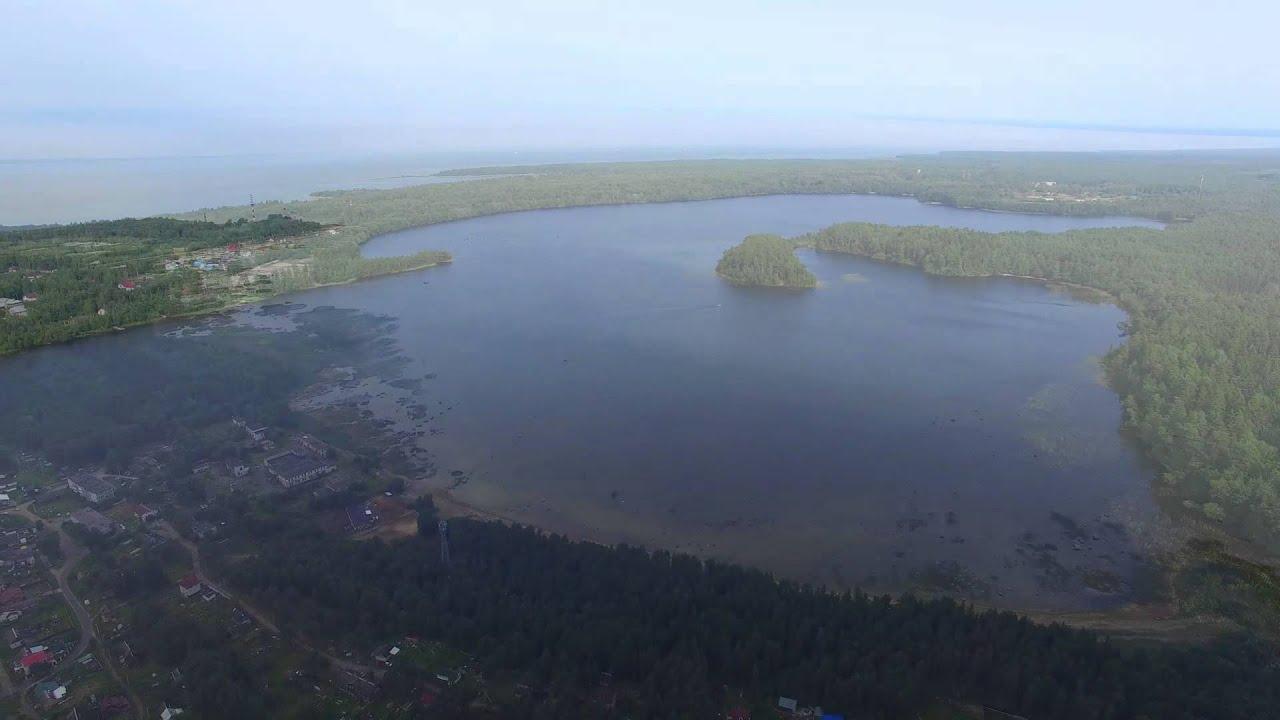 Шепелевское озеро с высоты птичьего полета