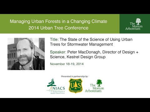 The State of the Science of Using Urban Trees for Stormwater Management