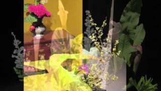 Ikebana Show