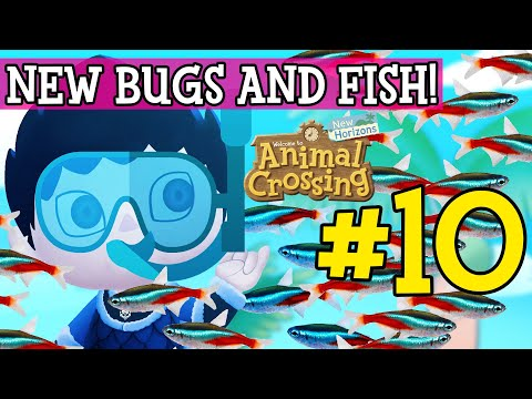 NEW BUGS AND FISH! - Animal Crossing: New Horizons #10
