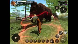 The wolf: RPG online game
