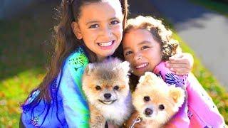Little Sister I Love You! - Song for Kids