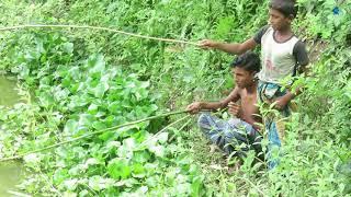 Amazing Cute Fishing videos by Bangladeshi Boy | Fishing in  Bangladesh village | BD Fish
