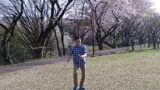 Basic knife juggling tricks 保土ヶ谷公園の桜舞い散る絶好のロケーシ...