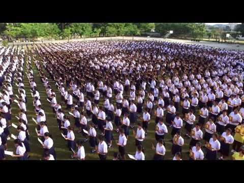แปลตัวอักษร โรงเรียนนวมินทราชินูทิศ หอวัง นนทบุรี