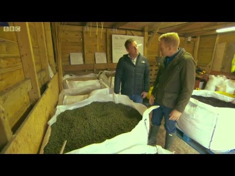 BBC Countryfile at BGI ~ Farming Crops for Fuel  BIOFUELS