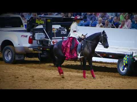 Extreme Mustang Makeover 2017 Ft  Worth Top 10 Highlights