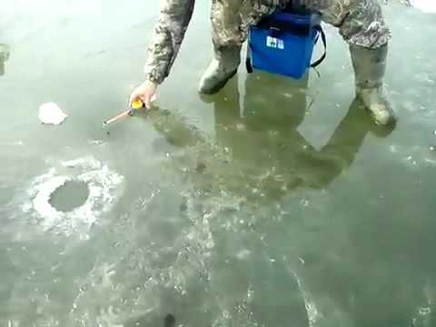 зимняя рыбалка на крупного ротана