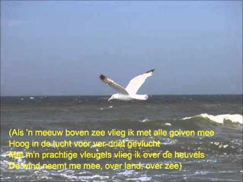 Als een meeuw boven zee videoclip zonder tekst.wmv