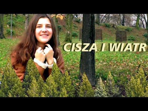 Artur Rojek - Cisza i Wiatr | cover