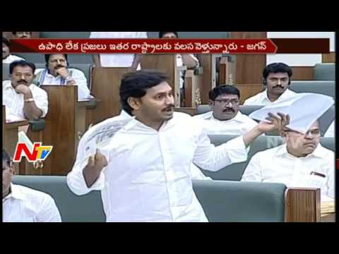 YSRCP MLAs Walkout from Assembly over TDP Comments || AP || NTV