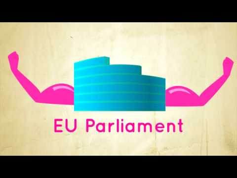 The EU Parliament and the Treaty of Lisbon.