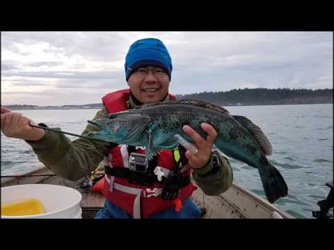 Fishing For Ling Cod