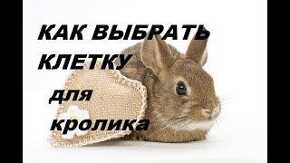 клетка для кролика. Как выбрать клетку для кроликов. Хорошая клетка для кроликов