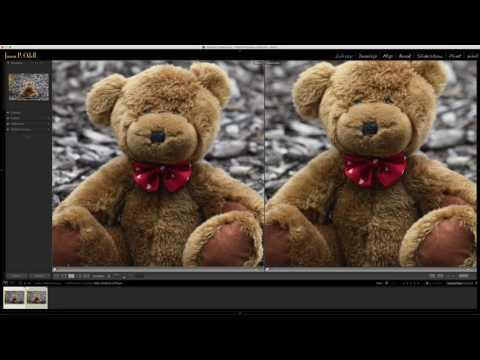 Tested: Nikon 200-500 f/5.6 vs. 500mm f/4 VR