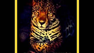 los jaguar de valle hermoso     muchachita san juanera