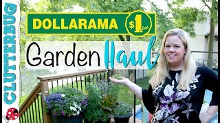 come with me to dollar tree amazing new finds
