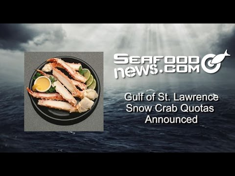 Gulf of St. Lawrence Snow Crab Quotas Announced